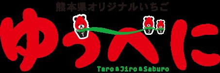 熊本県オリジナルいちご ゆうべに